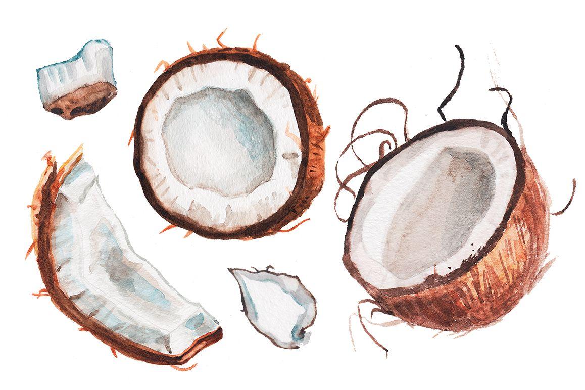 kokos2.jpg